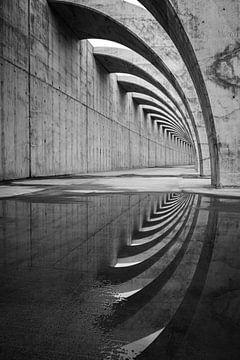 Gebogene Formen in Beton von Pierre Verhoeven