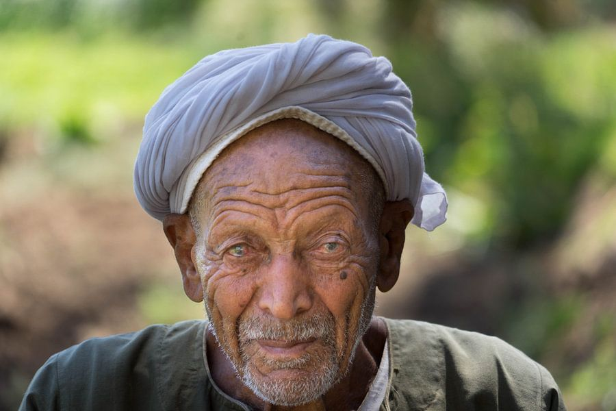 Oude Egyptische man van Diana Kors