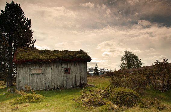 Desolaat - landschap Noorwegen