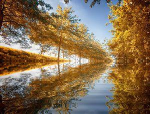 herfst achtergrond van