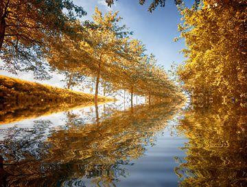 Herfst achtergrond van Egon Zitter