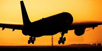 Delta Airbus A330-300 au coucher du soleil sur Stefano Scoop