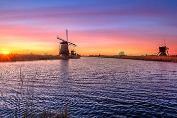 Kinderdijk Kleurvol landschap van Björn van den Berg