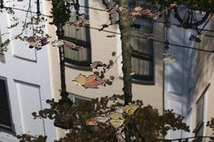 Spiegeling in de |Oude Gracht van Utrecht 2 van