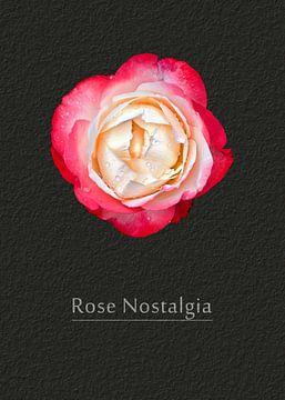 Rose Nostalgia van Leopold Brix