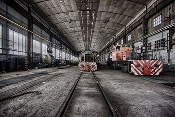 Treinen in een verlaten loods van Rens Bok
