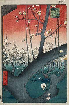 Pruimenboomgaard in Kameido (Hiroshige) van