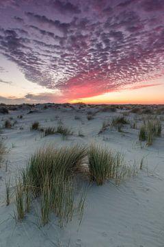 Sonnenaufgang über den Dünen von Schiermonnikoog von Martzen Fotografie