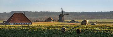 Hollands landschap van Harrie Muis