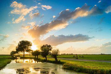 Alblasserwaardse polder sur Jan Koppelaar