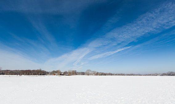 Panorama van een winter weiland