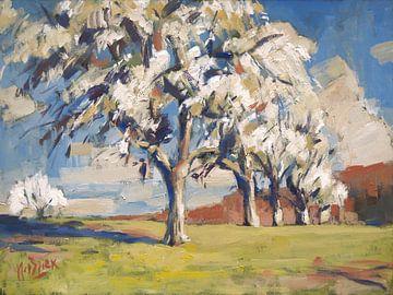 Hoogstam perenbomen nabij Cottessen van Nop Briex