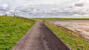 Fietspad Waddendijk van