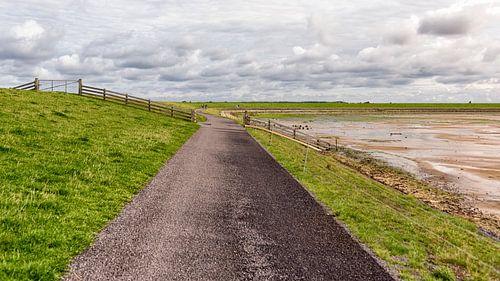 Fietspad Waddendijk