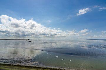 vergezicht over de Waddenzee van