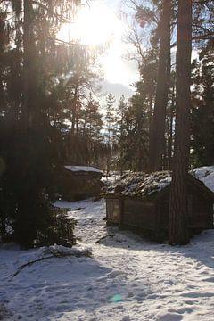 Finland van Hélena Schra