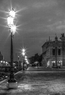 Venice von Olivier Van Cauwelaert