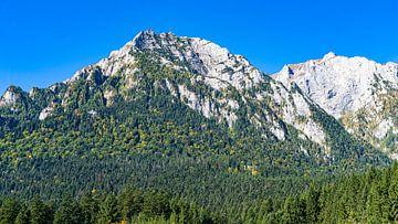 Uitzicht op de bergtoppen van Bucegi Nationaal Park in Roemenië van Jessica Lokker