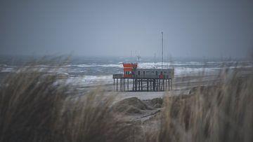Stormachtige middag op het strand van Petten van Tes Kuilboer
