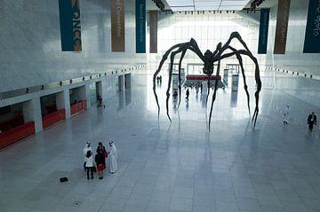 Araignée au centre de conférence de Doha, Qatar sur Kees van Dun