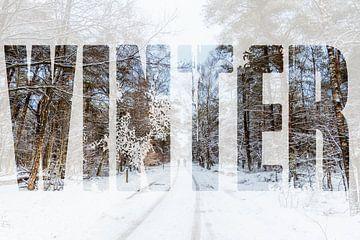 Een winters landschap van Stedom Fotografie
