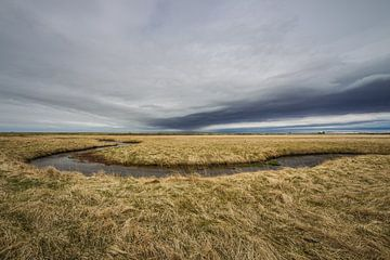 IJsland von Thijs Schouten