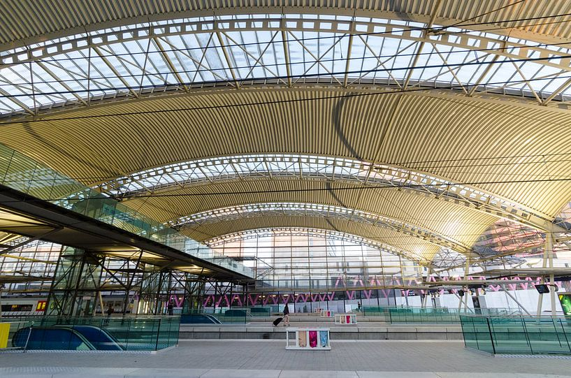 Stationshal Leuven van Mark Bolijn
