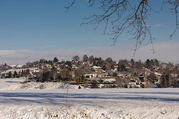 Het hulsveld in de sneeuw bij Simpelveld van John Kreukniet