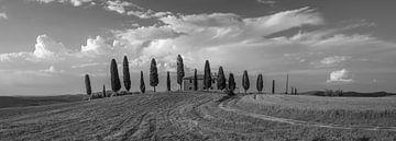Monochrome Toskana im Format 6x17, Agriturismo I Cipressini von Teun Ruijters