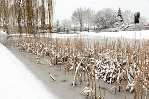 Snow and ice on water of pond