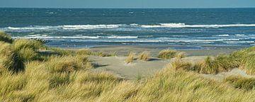 Panorama van de Westlandse duinen met uitzicht over het Noordzee strand van Gert van Santen