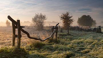 Zaun bei Sonnenaufgang von Pieter Helsen