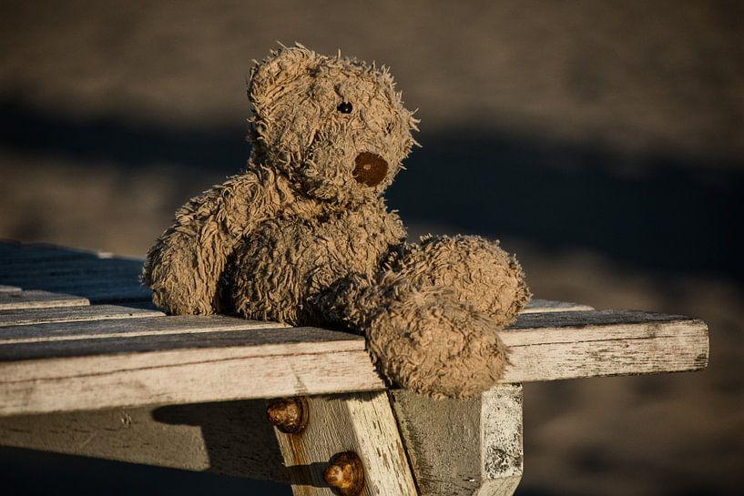 Lost teddy bear von Ralph Mbekie