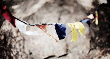 Boeddhistische gebedsvlaggen aan prikkeldraad, Sri Lanka van Roel Janssen