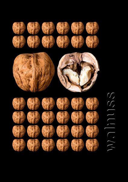 foodART - Walnuss von Erich Krätschmer