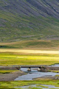 Landschap IJsland von Menno Schaefer