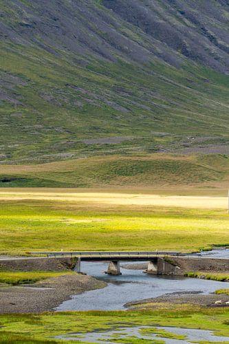 Landschap IJsland van