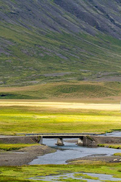 Landschap IJsland van Menno Schaefer