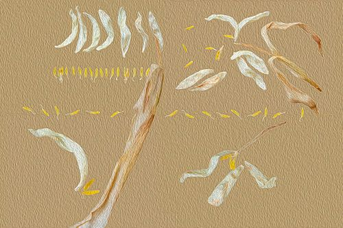 Composition mit Tulpe von Susan Hol