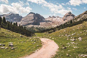 Zandweg in Fanes-Sennes-Braies in de Dolomieten in Italië van Expeditie Aardbol