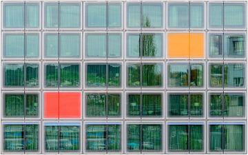 Windows 30, Roland Bucheli