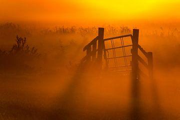Mistige zonsopkomst sur Jo Pixel
