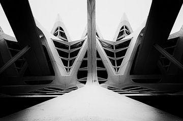 Museum Valencia zwart_wit van Bert Meijer