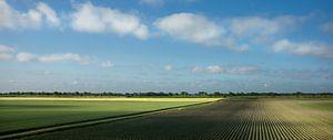 Uitgestrekte akkers in de vroege ochtend (panorama)