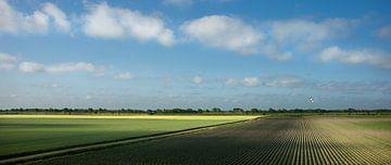 Uitgestrekte akkers in de vroege ochtend (panorama) van Bo Scheeringa