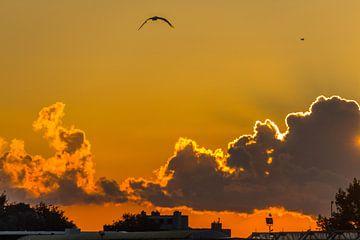 Sonnenaufgang über Ostende von didier de borle
