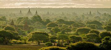 Tempels überall in Bagan, Myanmar von Sven Wildschut