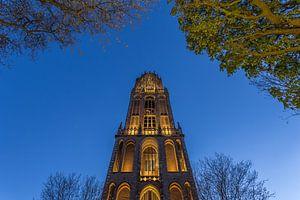 Domtoren Utrecht vanaf het Domplein in de avond - 3