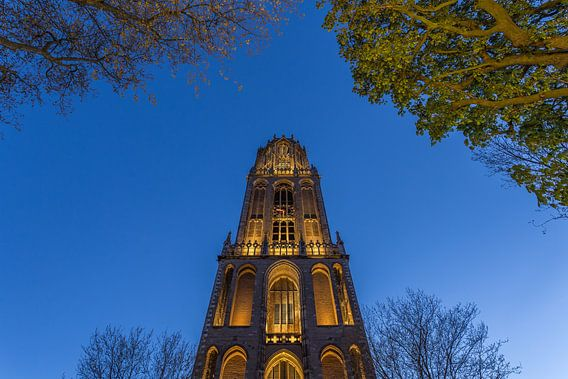 Utrecht by Night - Domtoren - 3