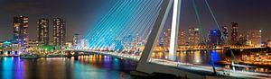 Panorama Rotterdam met de Erasmusbrug van